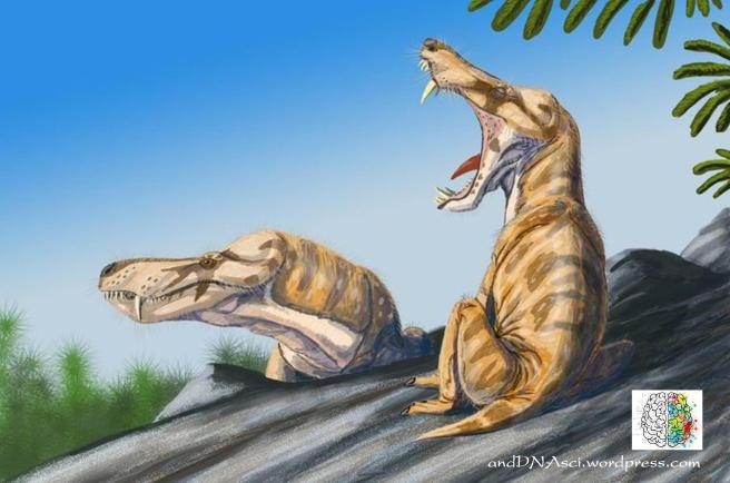 Pristerognathus vanderbyli, cat-like therapsid