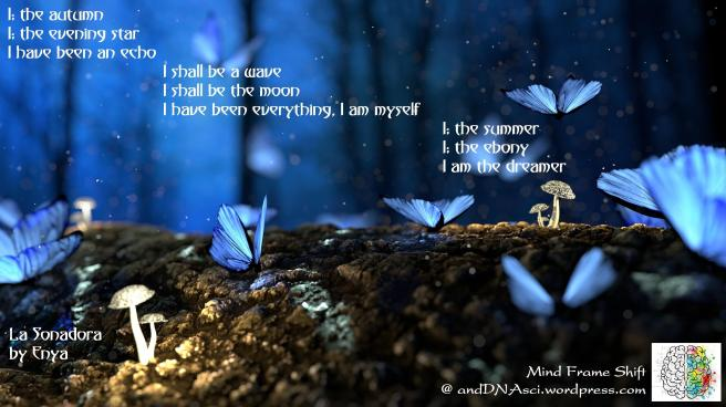 La Sonadora The Dreamer Enya Lyrics Translated English MindFrameShift Tanzelle Oberholster andDNAsci.wordpress