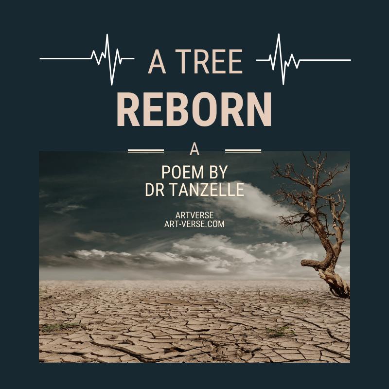 A Tree Reborn, artverse, art-verse.com, drabble, prose, literature, writing, inspirational, message, tanzelle oberholster, tree, nature, rebirth, renew, resurrection