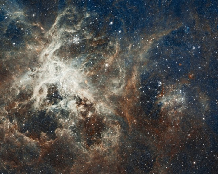 Tarantula, nebula, stars, gas, space, astronomy