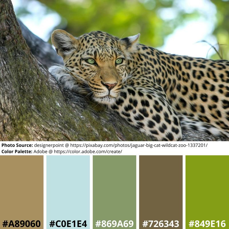 Leopard in a Tree, Mood Board, Color Palette, blue, green, brown, neutrals