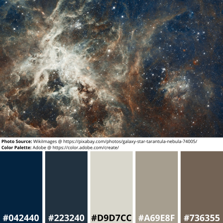 Tarantula, nebula, stars, gas, space, astronomy, blue, grey, brown, neutrals, mood boards, color palette