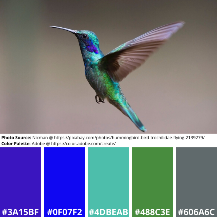 Humming, Mood Board, Colour Palette, purple, blue, green, silver