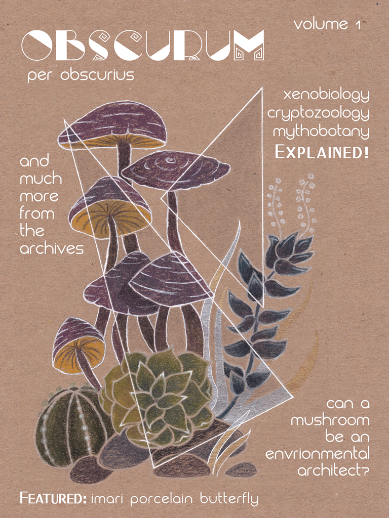 fictional, scientific journal, magazine cover, succulents, cacti, rocks, grass, mushrooms, crystals, geometric design, botanical print, science fiction, fantasy, illustration, xenobiology, cryptozoology, mythobotany, plants, fungi